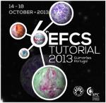 logo Tutorial EFCS 2013